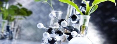 Biotechnology dissertation project training